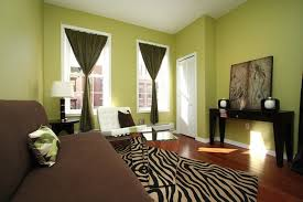 Furniture And Curtains That Match Your Green Walls